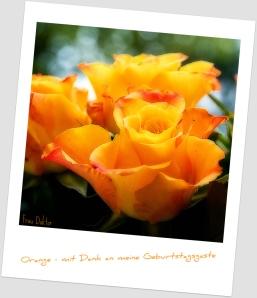 rosen_orange