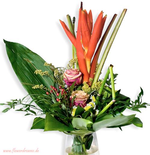Flowerdreams - exotisch