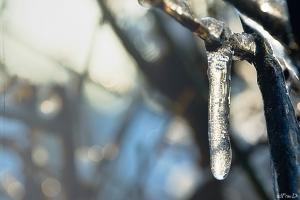 Winter von Frau Dr.