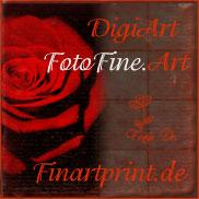 Poster, Kunstdrucke, Bildtapeten und mehr von Frau Doktor