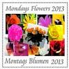 Montags Blumen, eingeladen von Frau Herzlich