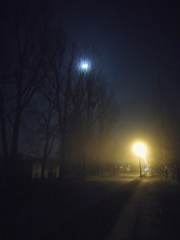 kalter Novemberabend