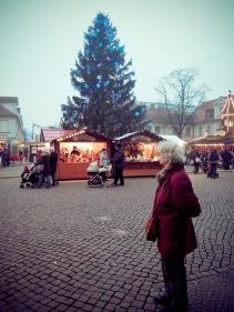 Blick auf den Weihnachtsbaum in Potsdam