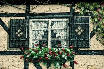 ... mit originellen Fenstern