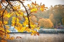 Herbst am Wannsee