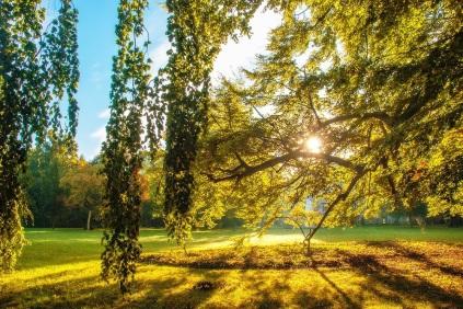 Herbstsichten