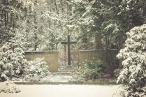 winter-spaziergang (1 von 25)