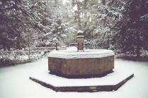 winter-spaziergang (15 von 25)
