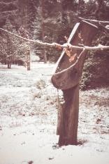 winter-spaziergang (18 von 25)