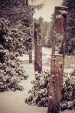 winter-spaziergang (21 von 25)