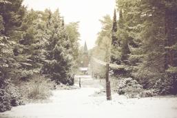 winter-spaziergang (3 von 25)