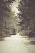winter-spaziergang (4 von 25)