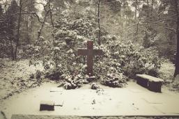 winter-spaziergang (5 von 25)