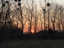 Sonnenuntergang, der Blick von unserem Grundstück aus