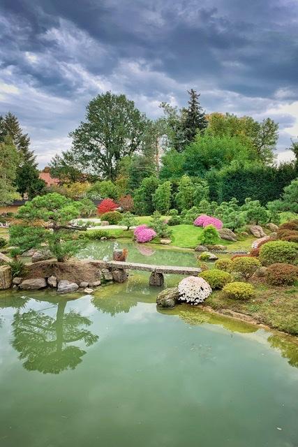 Blick über den Bonsai Garten